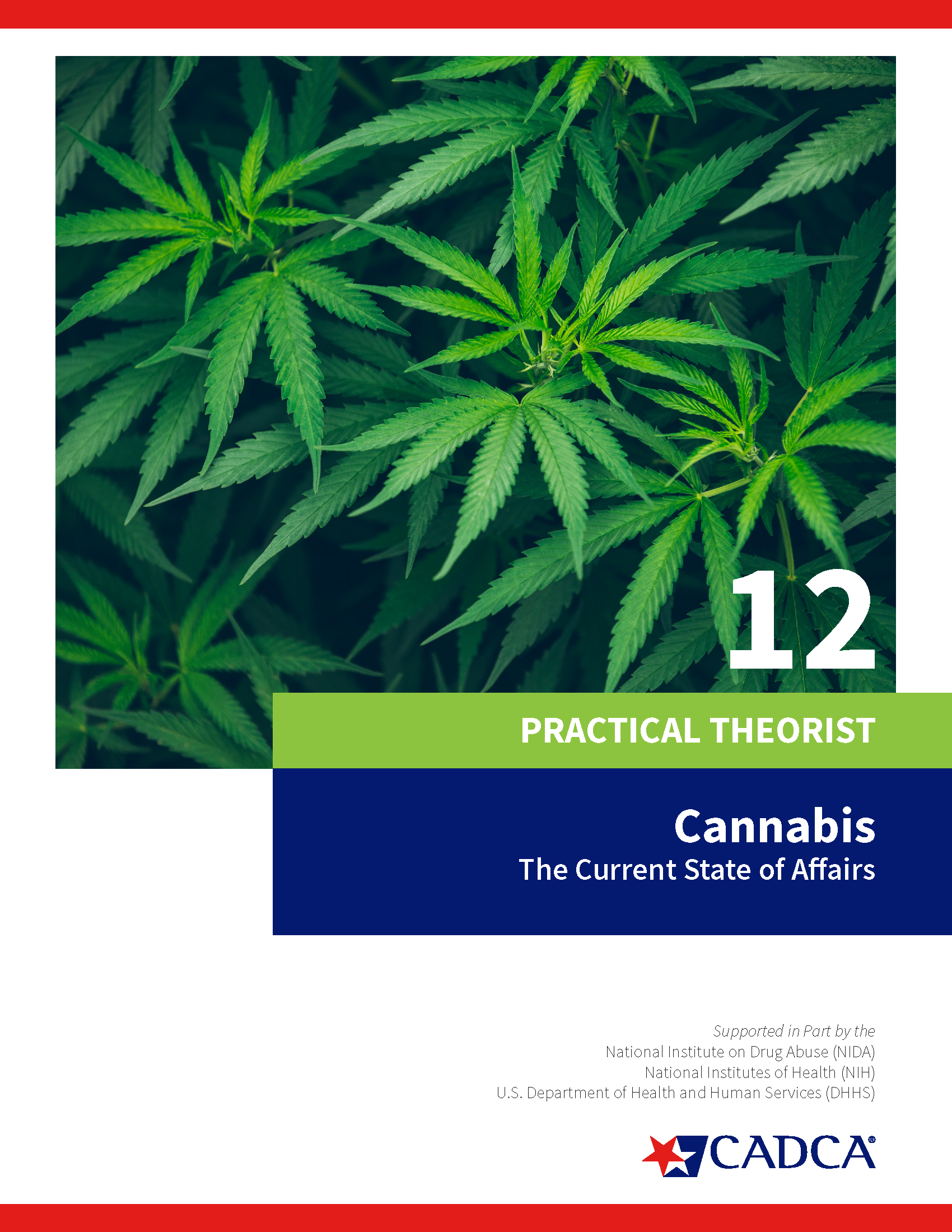 Practical Theorist 12 - Cannabis, The Current State of Affairs - Download